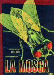 Mosca, La (2 DVD)