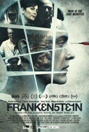 Frankenstein (Frank3n5t31n) (2016)