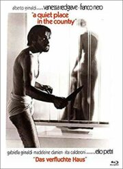 Tranquillo posto di campagna, Un [Blu Ray+DVD] Cover D LTD 333