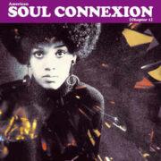 American Soul Connexion  (2 LP)