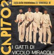 Gatti di Vicolo Miracoli – Capito? (45 giri)