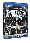 Frankenstein Junior – Special Ed. 40° anniversario (BLU RAY)