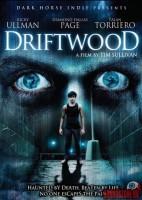 Driftwood (OFFERTA)